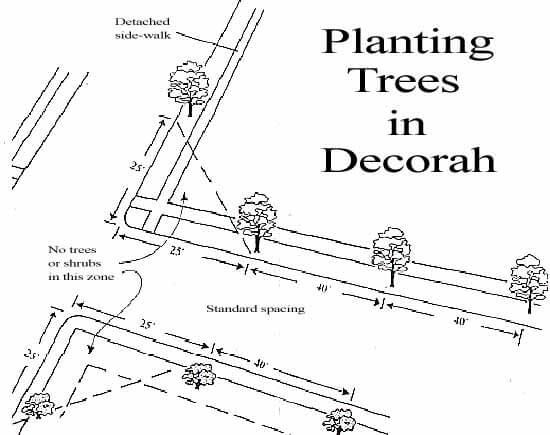 Planting Trees in Decorah